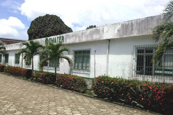 Divulgação/Ascom/Emater PA